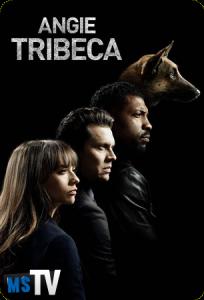 Angie Tribeca T1 [WEB-DL • m720p] Castellano