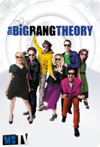 The Big Bang Theory T10 [1080p WEB-DL] Subtitulada