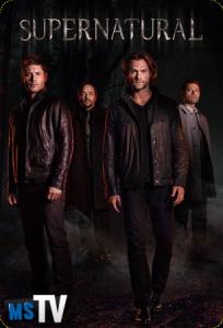 Supernatural T12 [HDTV | 720p] Inglés Sub.