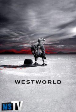 Westworld T2 [480p WEBRip] Subtitulada