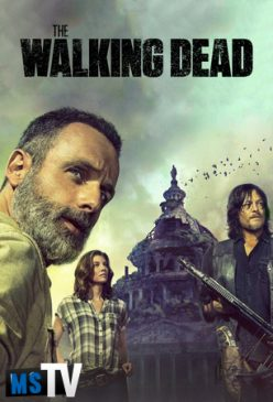 The Walking Dead T9 [480p WEB-DL] Subtitulada